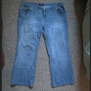 Daisy Fuentes Boot Cut Jean's size 18W
